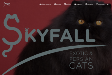 website skyfall cats