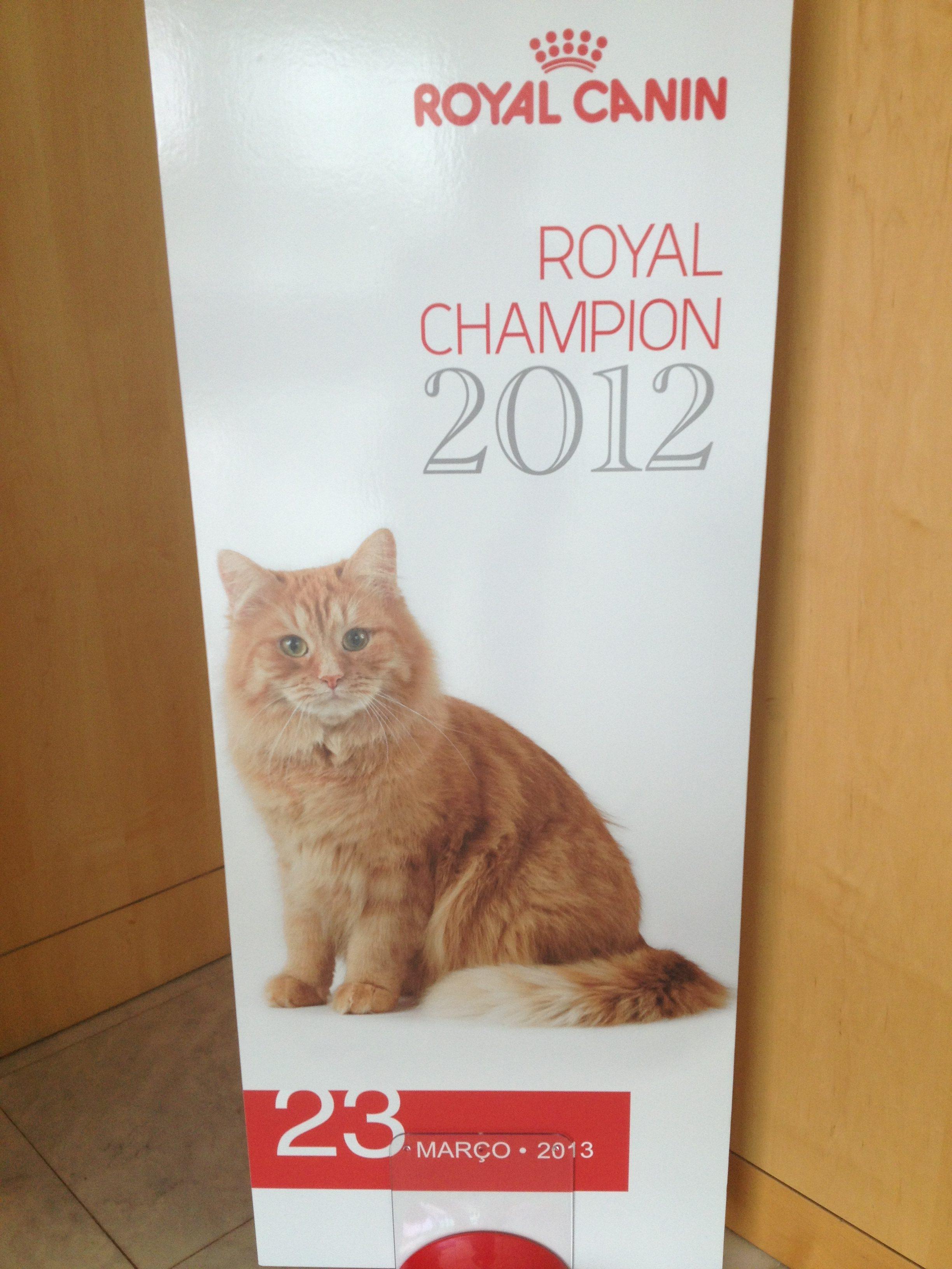 National Winner 2012