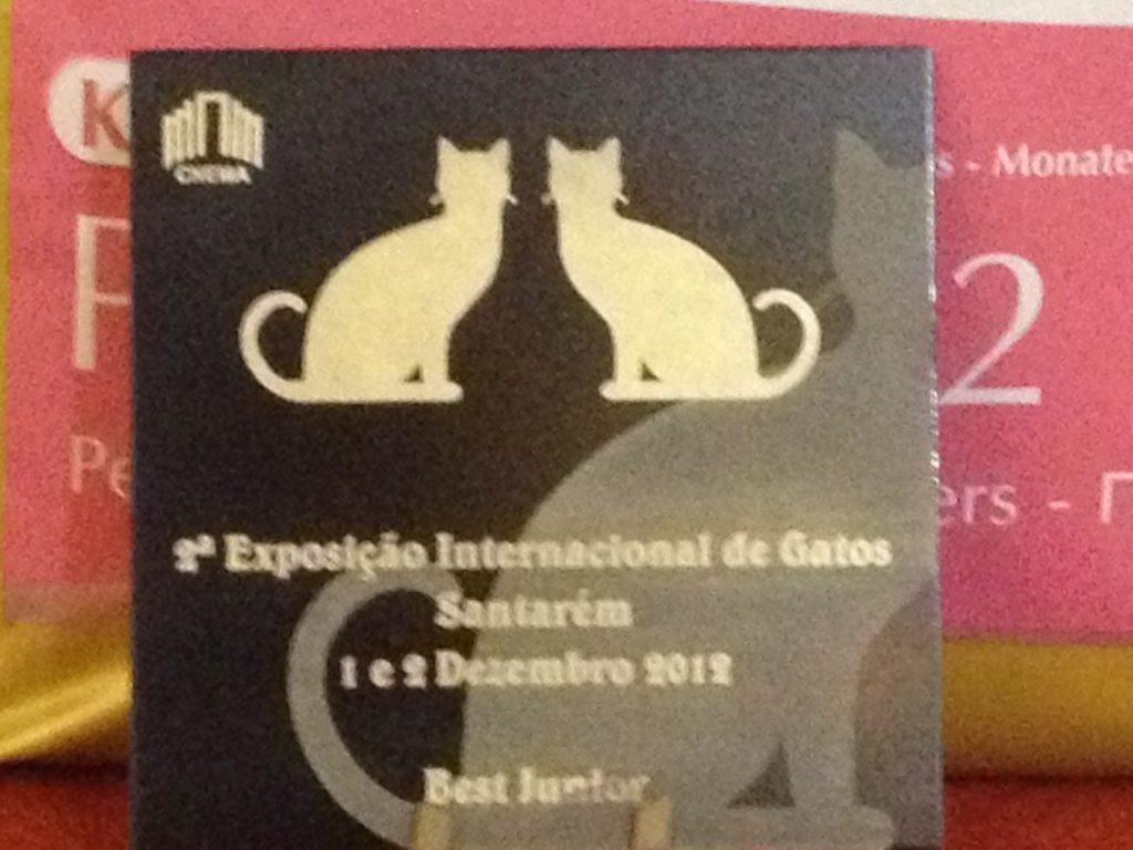 Exposição Internacional de Santarém 2012